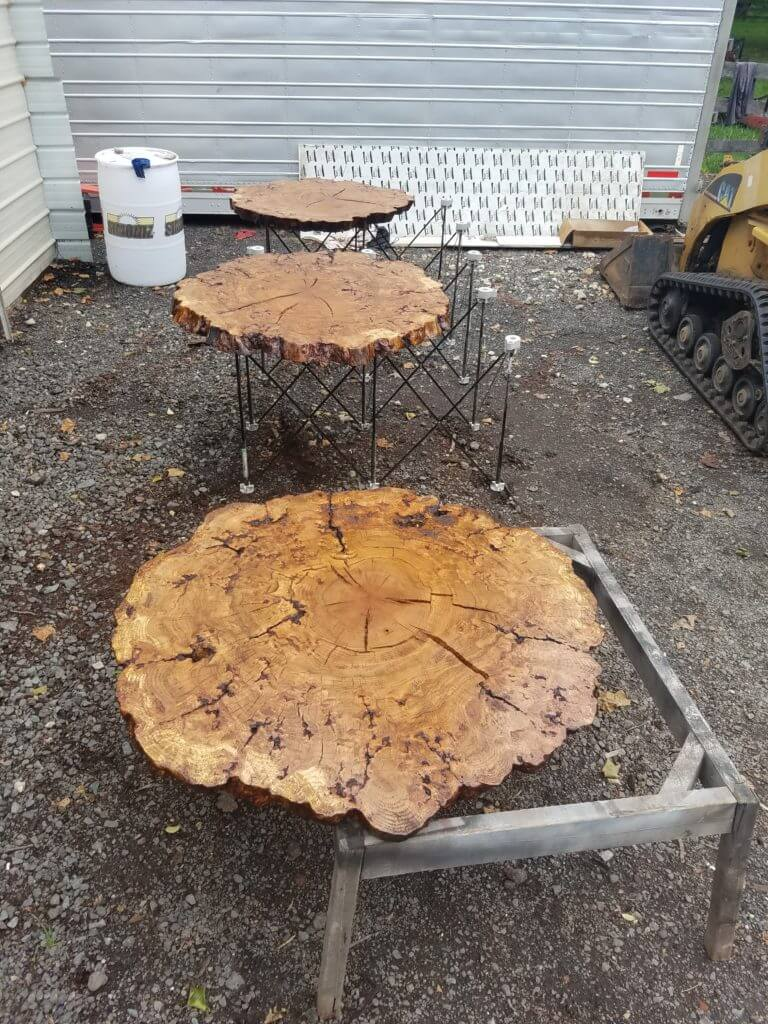 oak burl slices