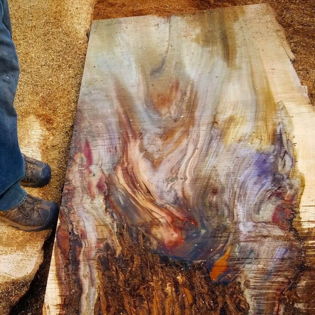 Rainbow poplar slab
